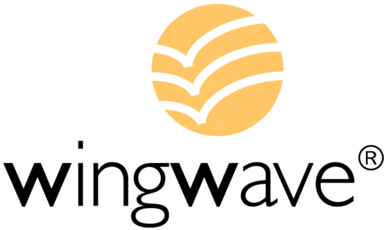 Wingwave Coach